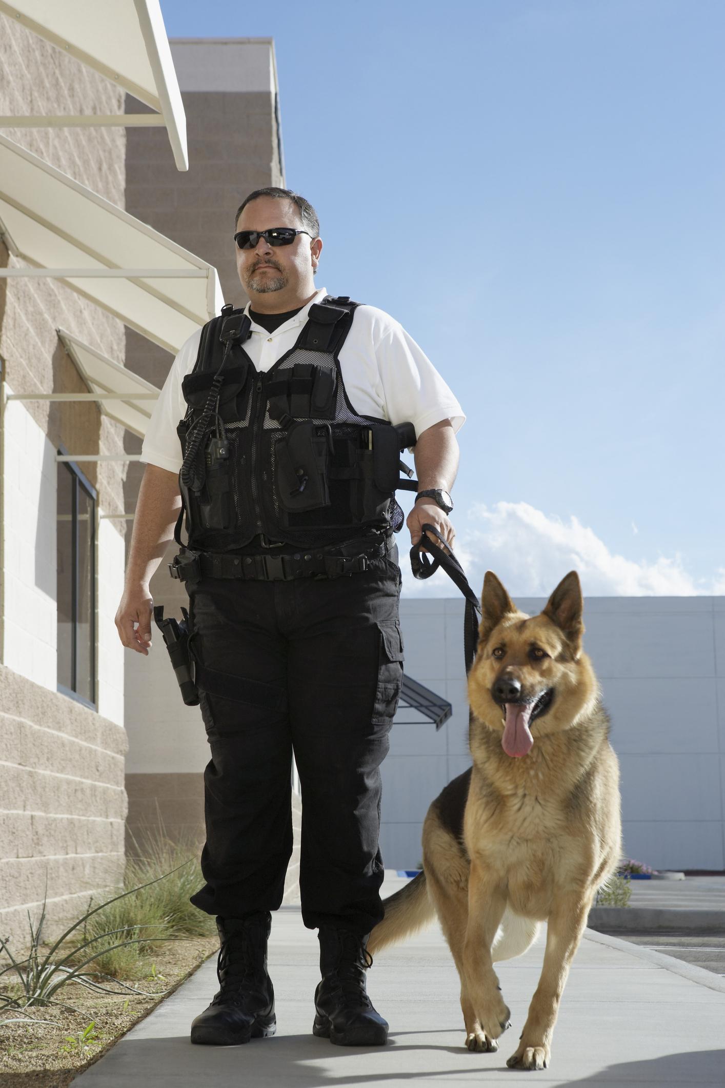 Un agent de sécurité avec un chien de garde